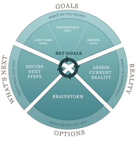 goals_option